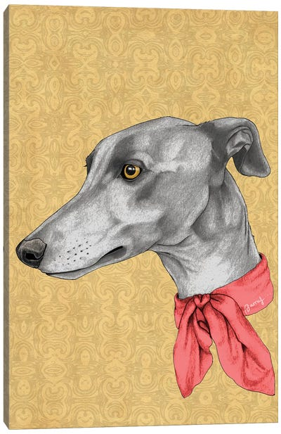 Greyhound With Scarf Canvas Art Print