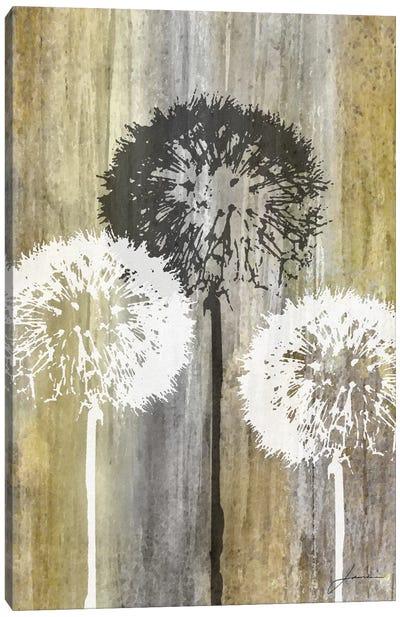 Rustic Garden II Canvas Art Print