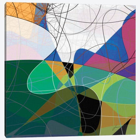 Entangled I Canvas Print #BRG15} by James Burghardt Canvas Artwork