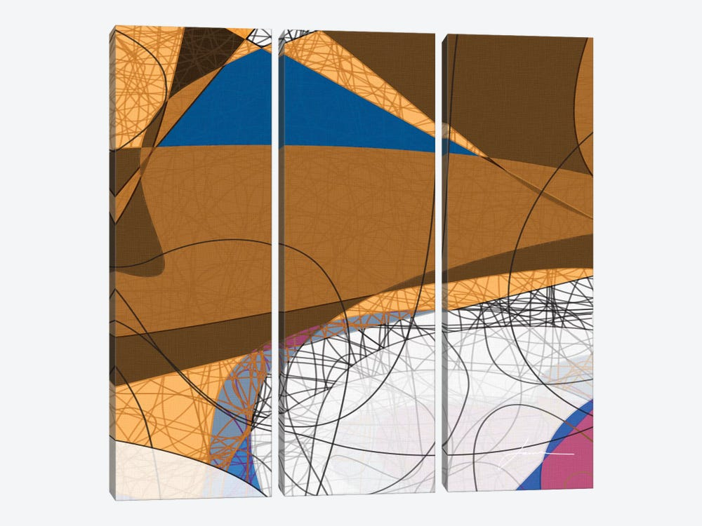 Tangled I by James Burghardt 3-piece Canvas Print