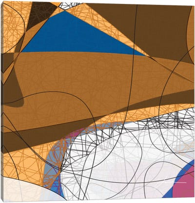 Tangled I Canvas Art Print