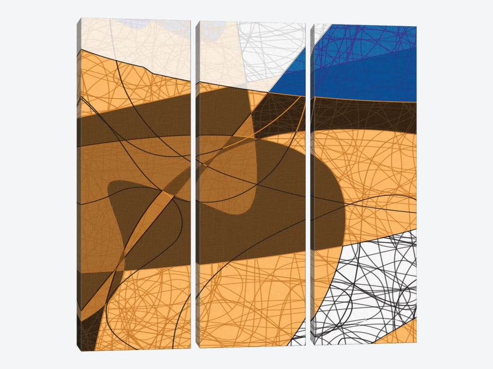 Tangled II by James Burghardt 3-piece Canvas Artwork
