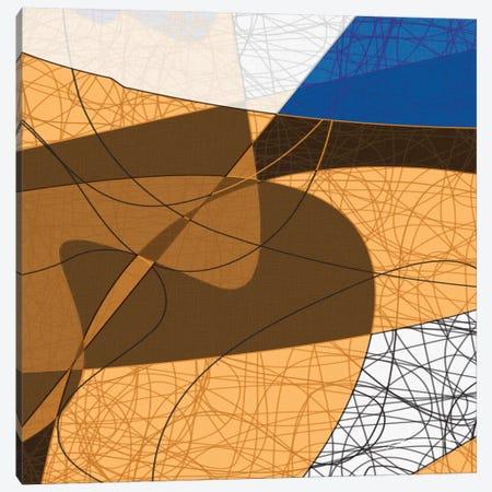 Tangled II Canvas Print #BRG18} by James Burghardt Canvas Print