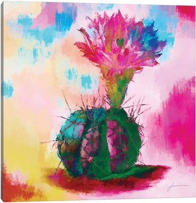 Desert Bloom I Canvas Art Print
