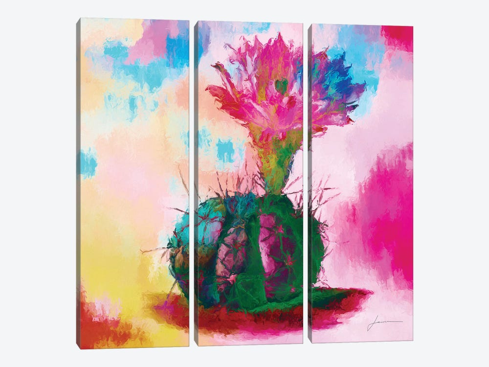 Desert Bloom I by James Burghardt 3-piece Canvas Art Print