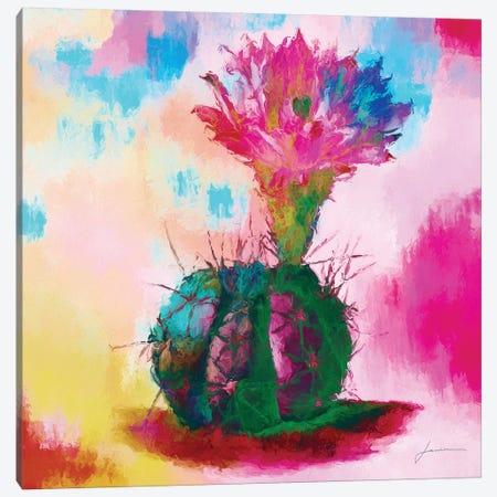 Desert Bloom I Canvas Print #BRG19} by James Burghardt Canvas Art Print