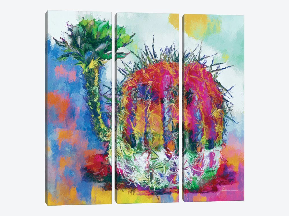 Desert Bloom II by James Burghardt 3-piece Canvas Art Print