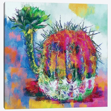 Desert Bloom II Canvas Print #BRG20} by James Burghardt Canvas Artwork