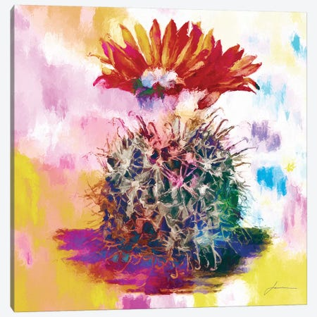 Desert Bloom III Canvas Print #BRG21} by James Burghardt Canvas Art