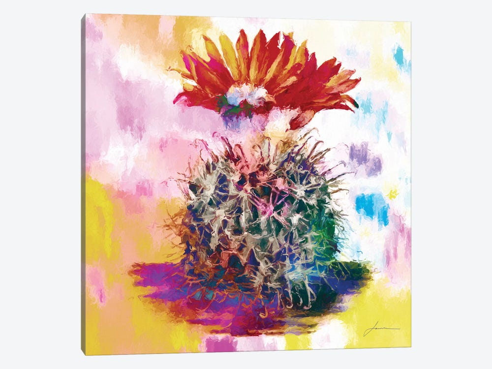 Desert Bloom III by James Burghardt 1-piece Canvas Wall Art