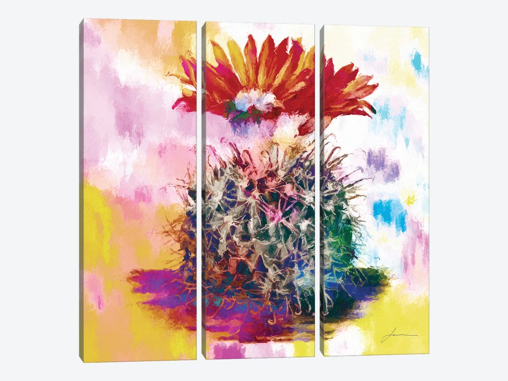 Desert Bloom III by James Burghardt 3-piece Canvas Wall Art