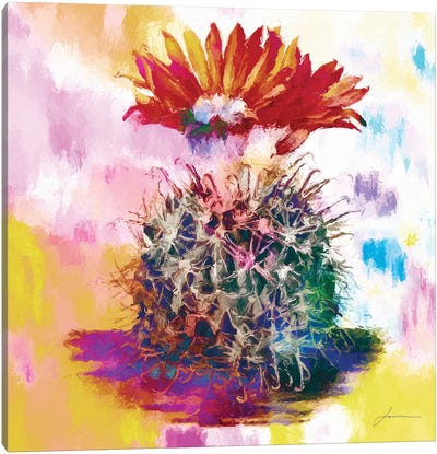 Desert Bloom III Canvas Art Print
