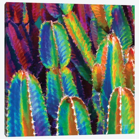 Neon Desert I Canvas Print #BRG22} by James Burghardt Canvas Art