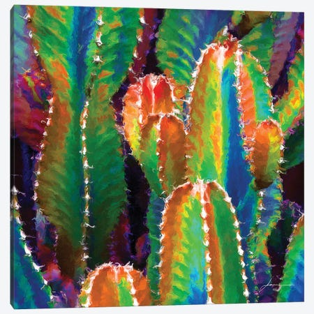 Neon Desert II Canvas Print #BRG23} by James Burghardt Canvas Art