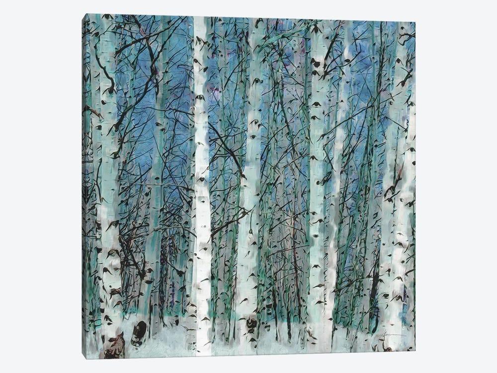 Birchgrove by James Burghardt 1-piece Canvas Art Print