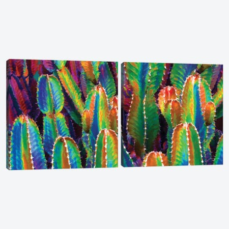Neon Desert Diptych Canvas Print Set #BRG2HSET001} by James Burghardt Canvas Wall Art