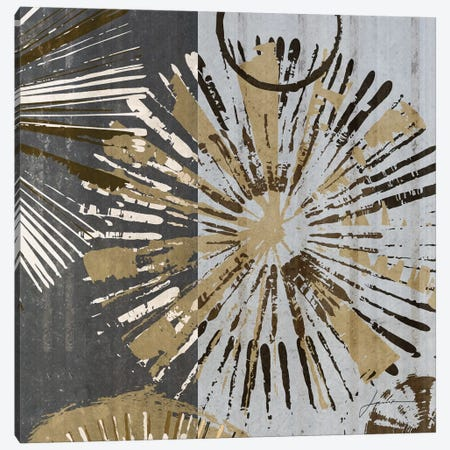Outburst Tiles III Canvas Print #BRG3} by James Burghardt Canvas Art Print