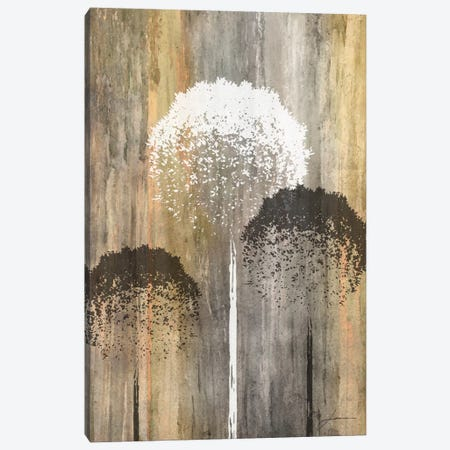 Rustic Garden I Canvas Print #BRG9} by James Burghardt Canvas Print