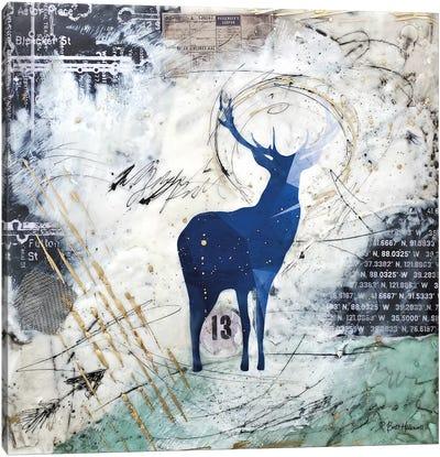 Wanderer's Spirit Canvas Art Print