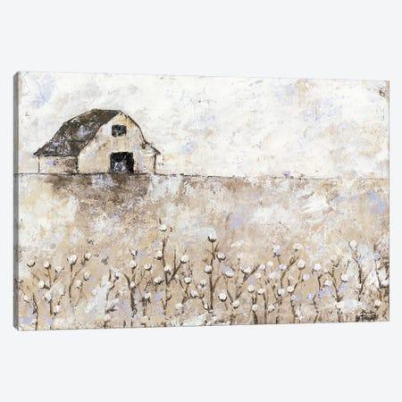 Cotton Farms Canvas Print #BRH30} by Britt Hallowell Canvas Artwork