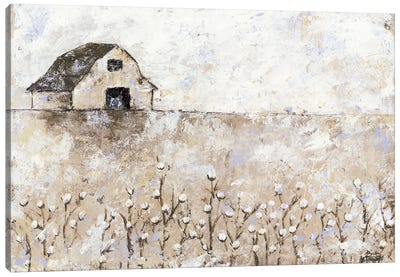 Cotton Farms Canvas Art Print