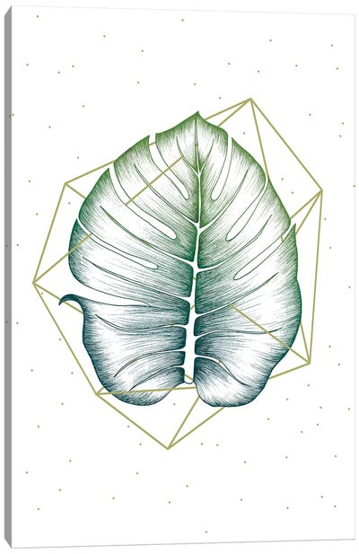 Geometry and Nature II Canvas Art Print