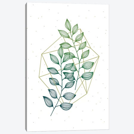 Geometry and Nature III Canvas Print #BRL107} by Barlena Canvas Artwork