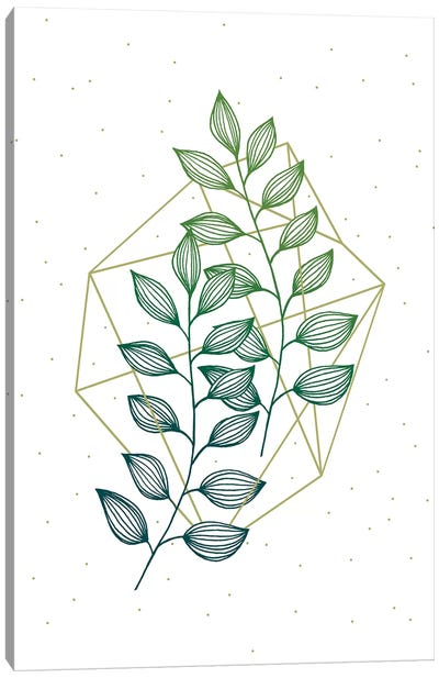 Geometry and Nature III Canvas Art Print