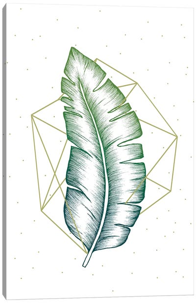 Geometry and Nature V Canvas Art Print