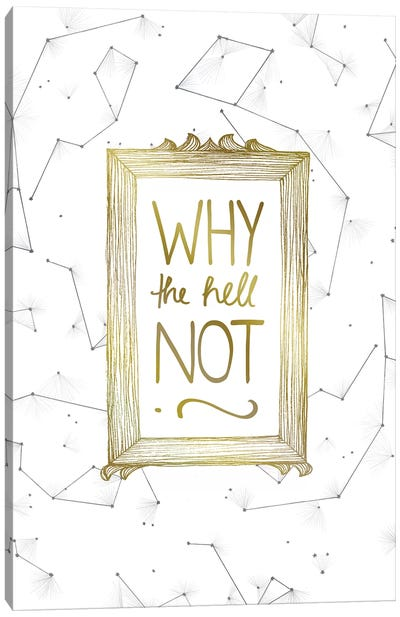 Why Not Canvas Art Print
