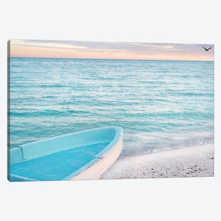 Solo Flight Canvas Print #BRT12} by Jon Bertelli Canvas Artwork
