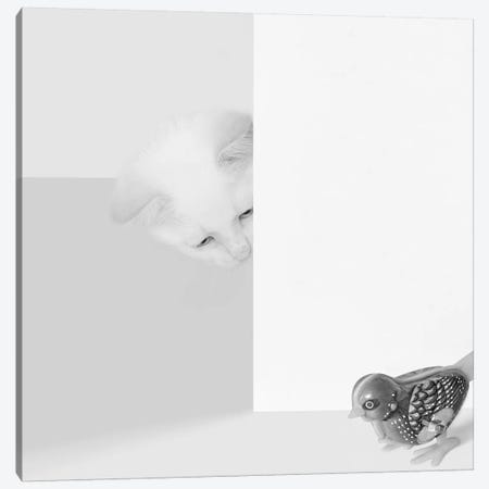 Peek A Boo Canvas Print #BRT17} by Jon Bertelli Canvas Art Print