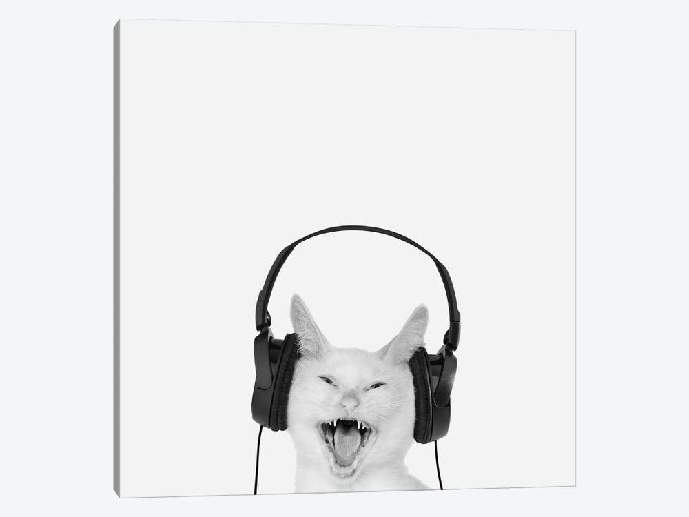 Rockin' Kitten by Jon Bertelli 1-piece Canvas Print