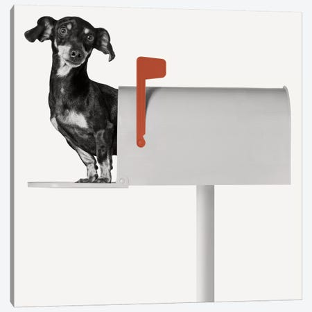 You've Got Mail Canvas Print #BRT5} by Jon Bertelli Canvas Wall Art