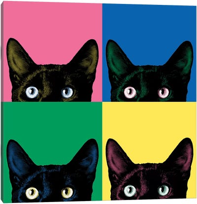Curiosity Pop Canvas Art Print
