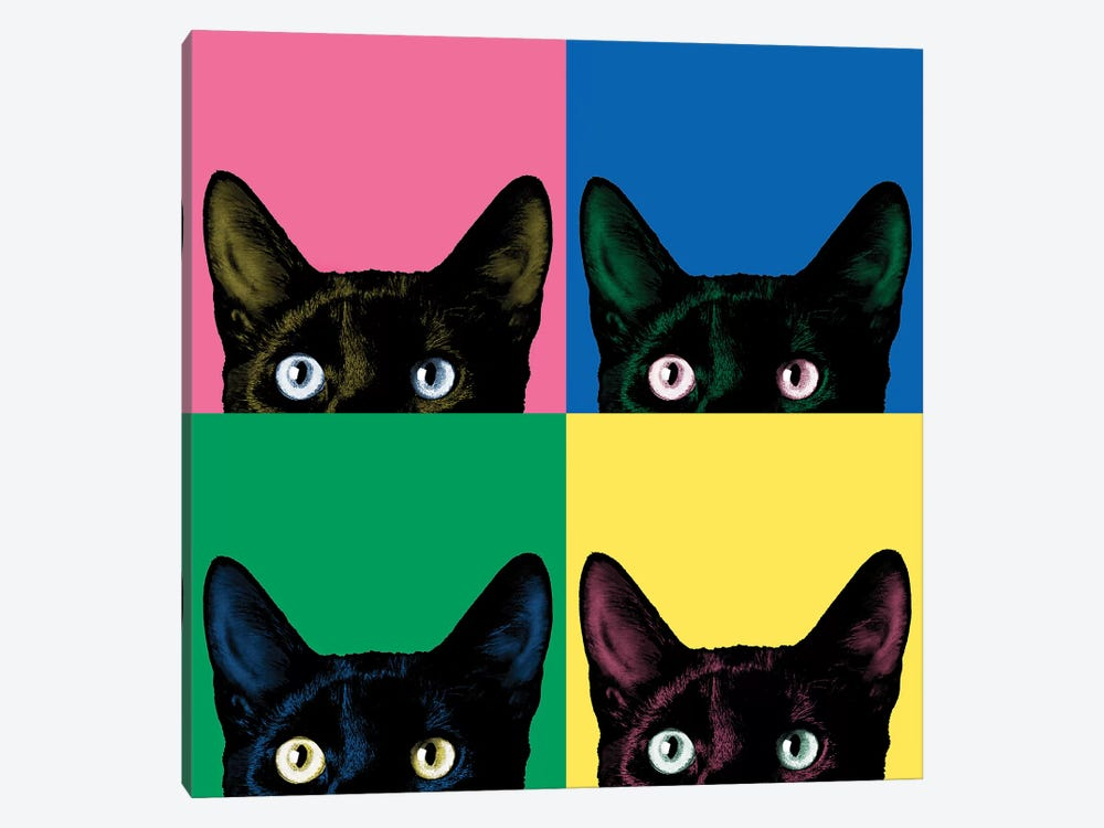 Curiosity Pop by Jon Bertelli 1-piece Canvas Print