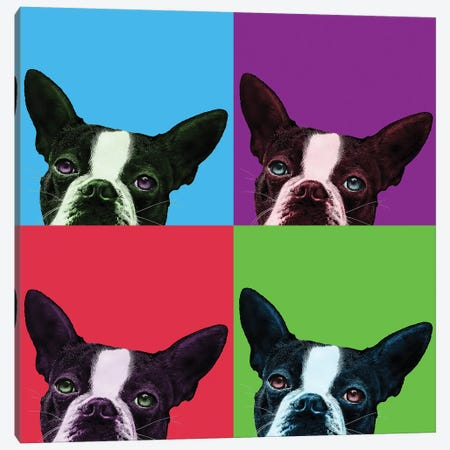 Loyalty Pop Canvas Print #BRT9} by Jon Bertelli Canvas Print