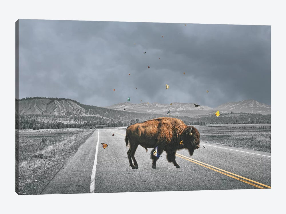 Buffalo Wings by Jason Brueck 1-piece Art Print