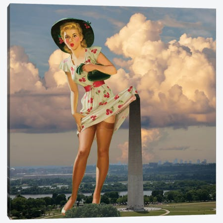 DC Pinup Canvas Print #BRU18} by Jason Brueck Canvas Art Print