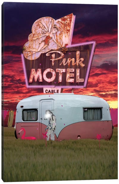 50 Shades of Pink Canvas Art Print