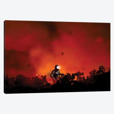 From The Ashes Canvas Print #BRU23} by Jason Brueck Canvas Wall Art