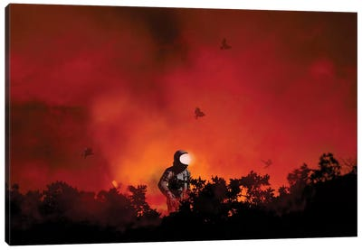 From The Ashes Canvas Art Print
