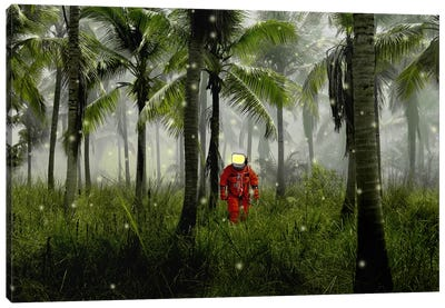 Guiding Lights Canvas Art Print