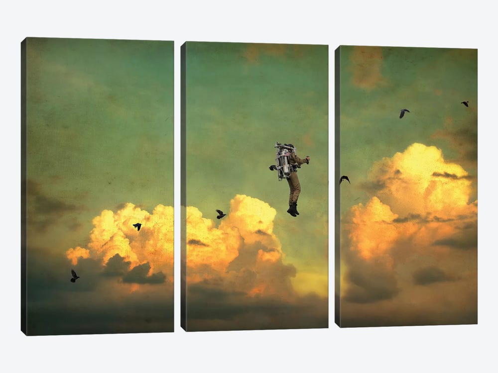 Icarus by Jason Brueck 3-piece Canvas Artwork