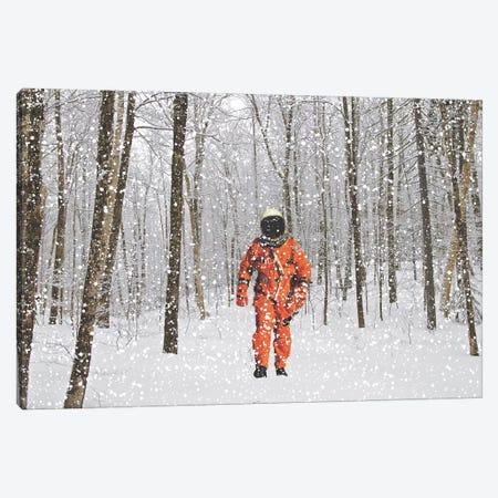 Lost in Colorado II 3-Piece Canvas #BRU33} by Jason Brueck Art Print