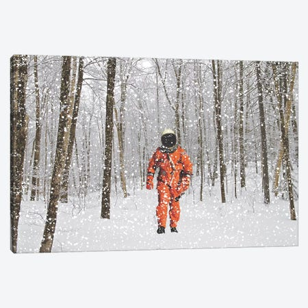 Lost in Colorado II Canvas Print #BRU33} by Jason Brueck Art Print