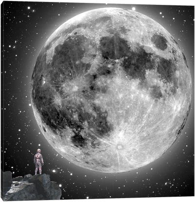Moonstruck Canvas Art Print