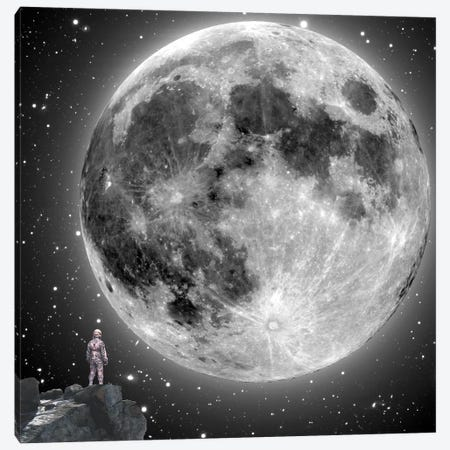 Moonstruck Canvas Print #BRU37} by Jason Brueck Canvas Artwork