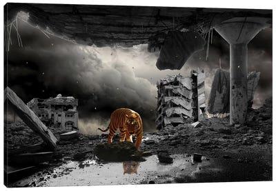 A Most Curious Catastrophe Canvas Art Print