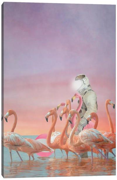 The Decoy Canvas Art Print
